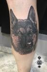 perro moreno logo
