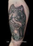 lobo luismi logo